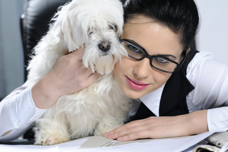 woman and dog expressing friendship stock images