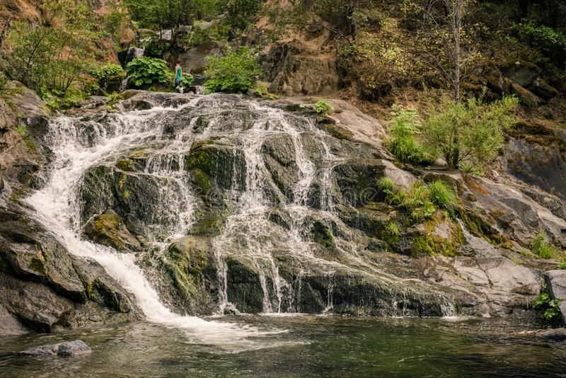 Girl and her dog stand on top of a waterfall in Whiskeytown, Northern California royalty free stock image