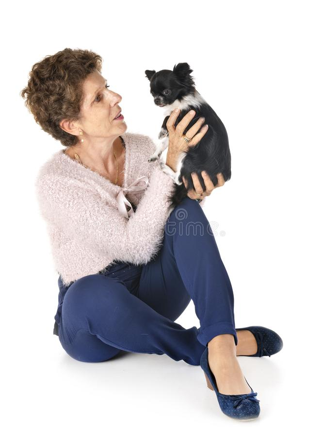 Woman and dog. Little chihuahua and woman in front of white background stock image
