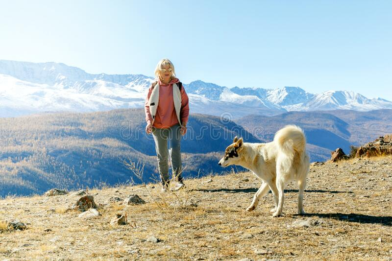 Woman with a dog in the mountains. Travel, people traveling with friend, hiking in mountains royalty free stock images