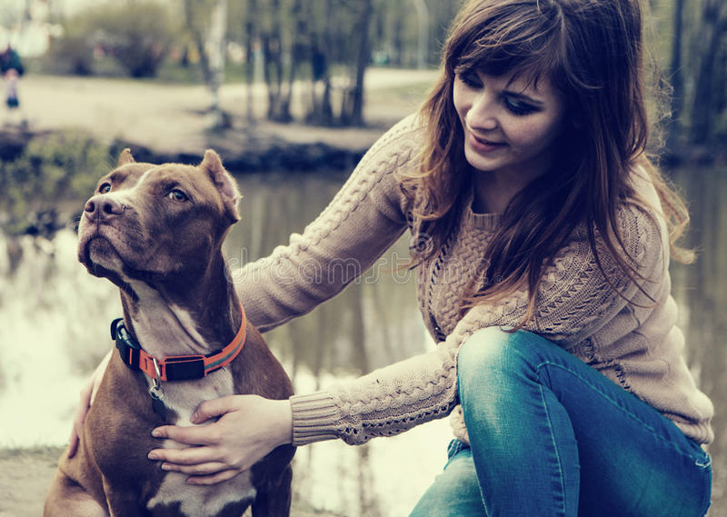 Woman with dog nature playing together royalty free stock photos