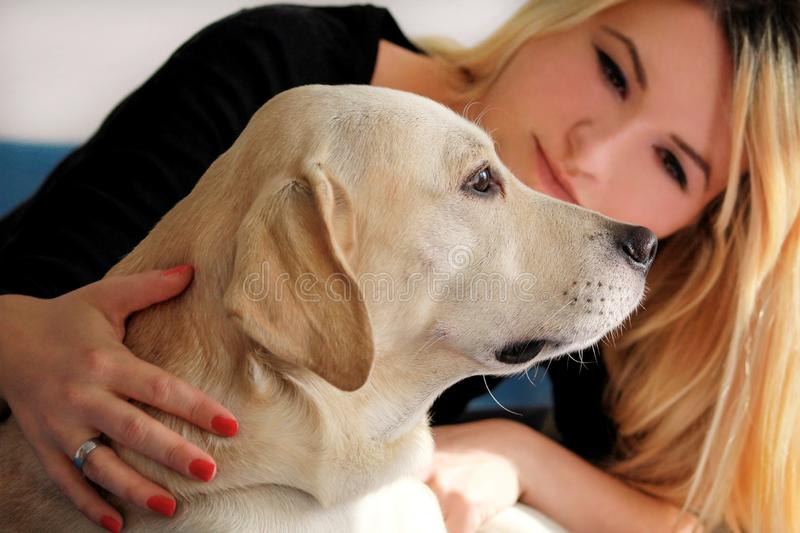 Woman with dog is resting in bed at home, relaxing in bedroom. Girl is petting with her dog. Portrait of cute yellow labrador. stock photo