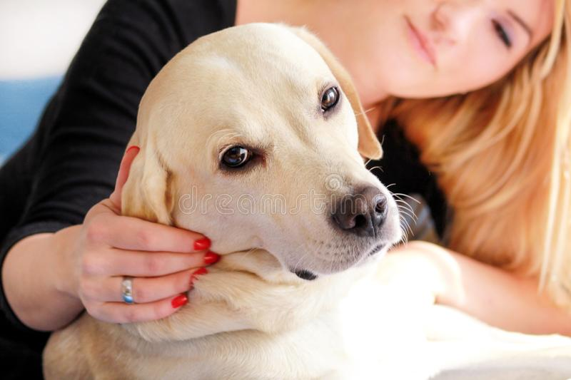 Woman with dog is resting in bed at home, relaxing in bedroom. Girl is petting with her dog. Portrait of cute yellow labrador. Woman with dog is resting in bed stock image