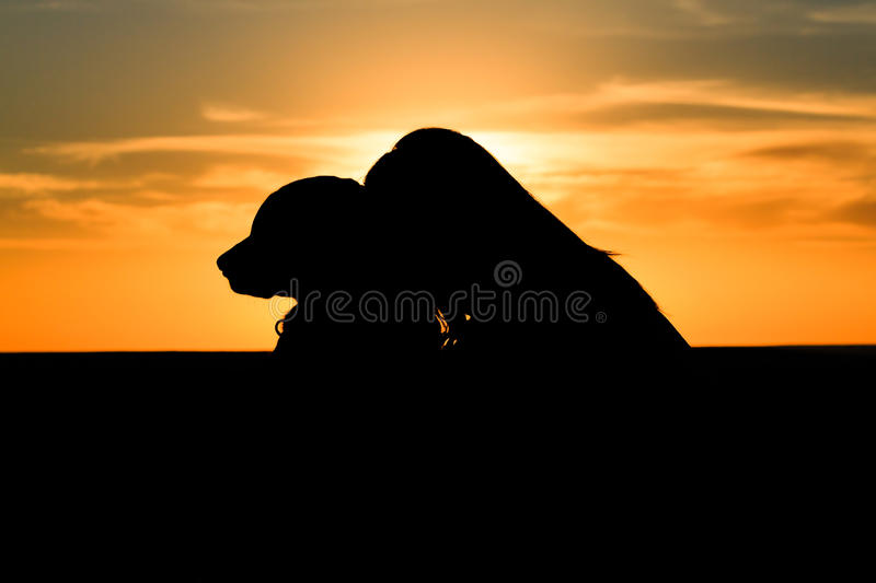 Woman dog silhouette royalty free stock images