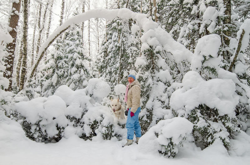 Woman with a dog in a snow-covered winter forest stock photo