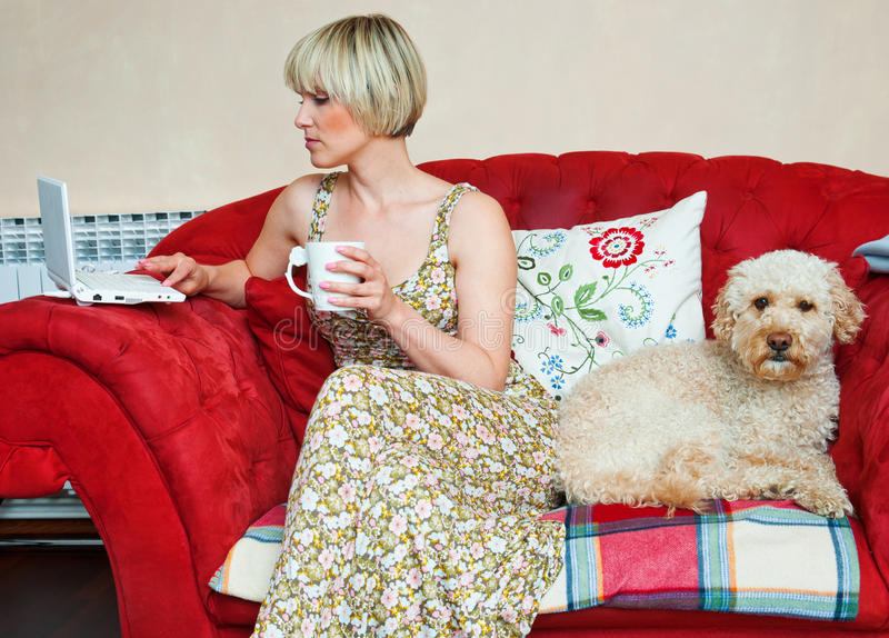 Woman and dog on sofa. Woman working on laptop with dog sitting on the sofa in living room royalty free stock image