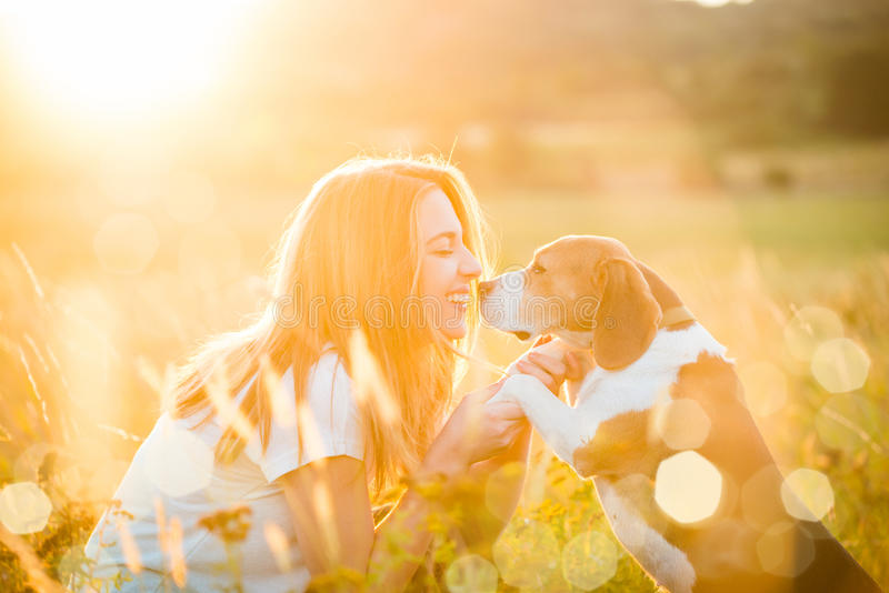 Woman and dog royalty free stock photography