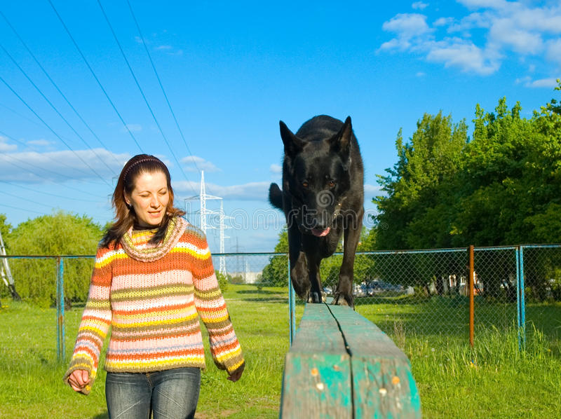 Woman is dog training royalty free stock photography