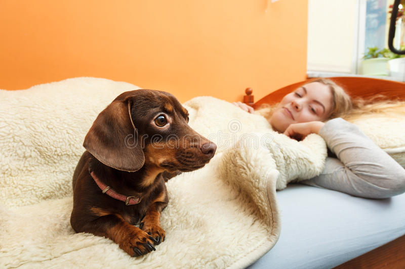 Woman with dog waking up in bed after sleeping. stock image
