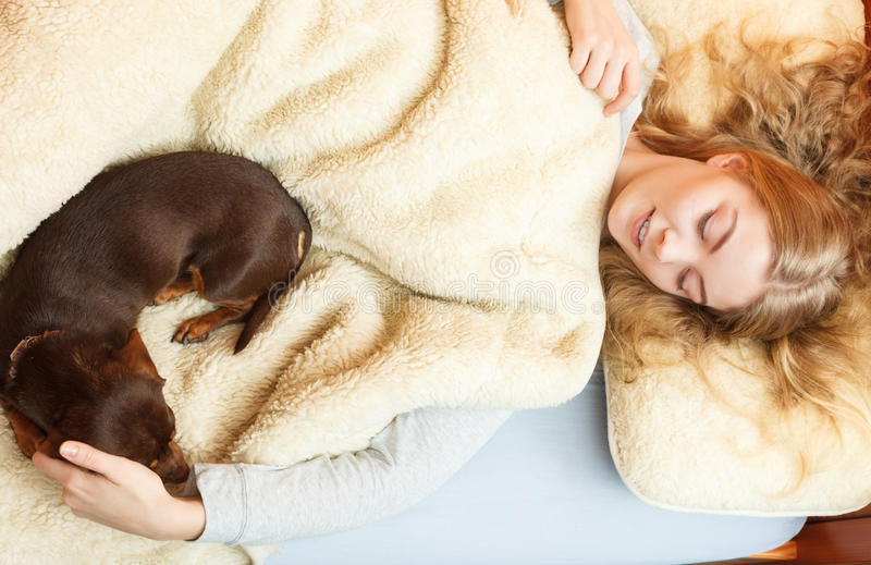 Woman with dog waking up in bed after sleeping. stock images