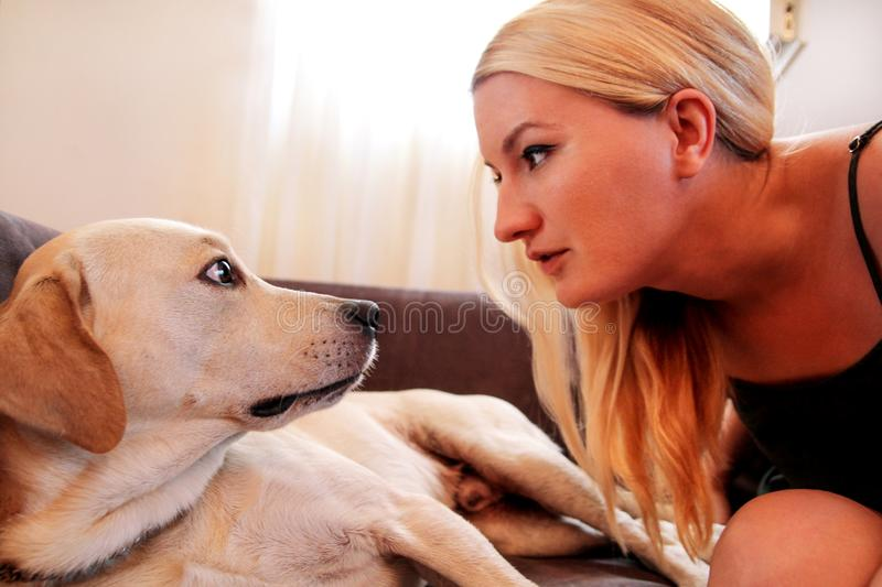 Woman with dogs. The dog gives a paw her female owner on sofa. Happy Pretty girl petting and looking her Yellow labrador retriever dog laying in the bed at royalty free stock photo