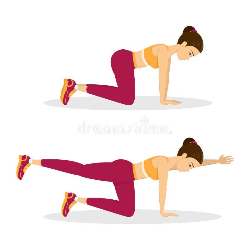 Woman doing bird dog exercise. Exercise for balance royalty free illustration