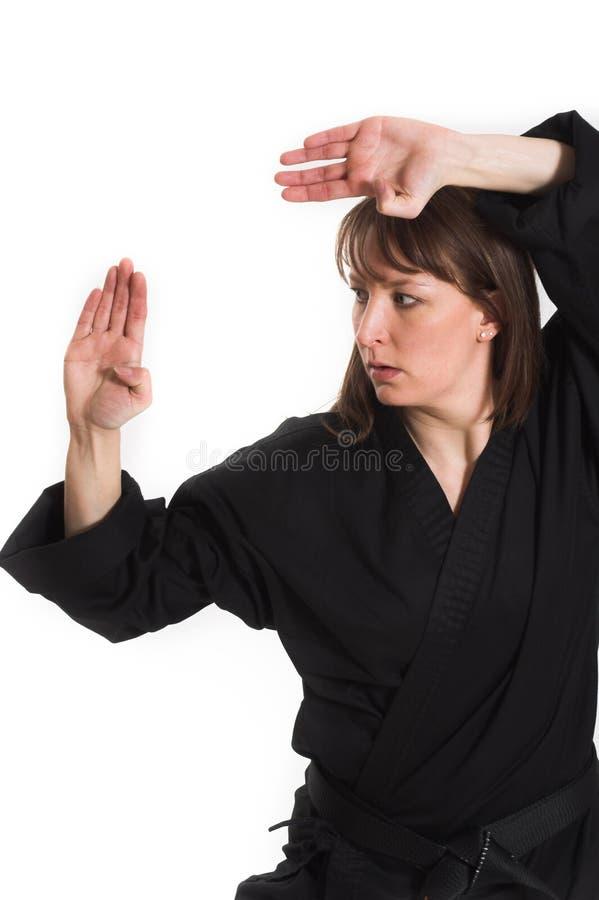 Download Woman doing karate stock image. Image of isolation, kick - 2251839