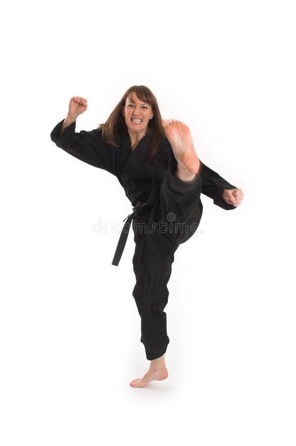 Download Woman doing karate stock image. Image of shape, kimono - 2251843