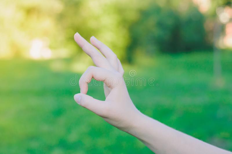 Woman doing okay symbol. Hand gesture royalty free stock images