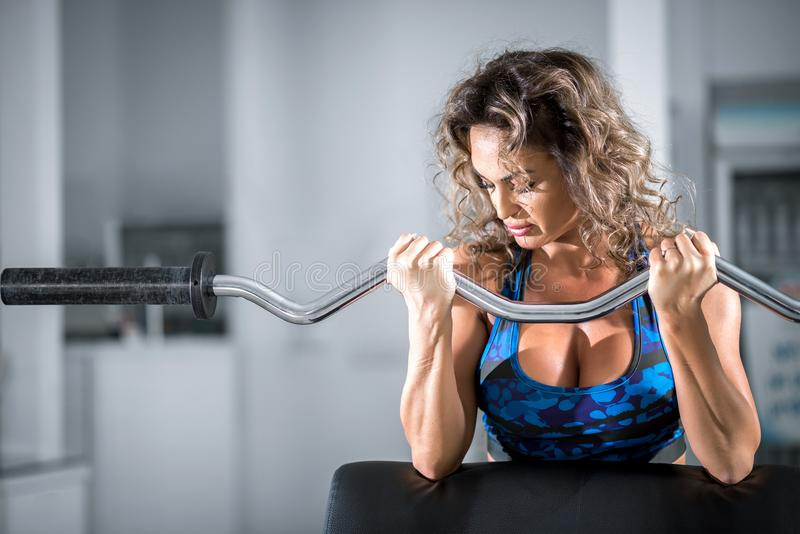 Woman doing preacher curl biceps exercise. Attractive woman with curly hair doing preacher curl biceps exercise on bench with EZ curl bar in modern fitness stock photo