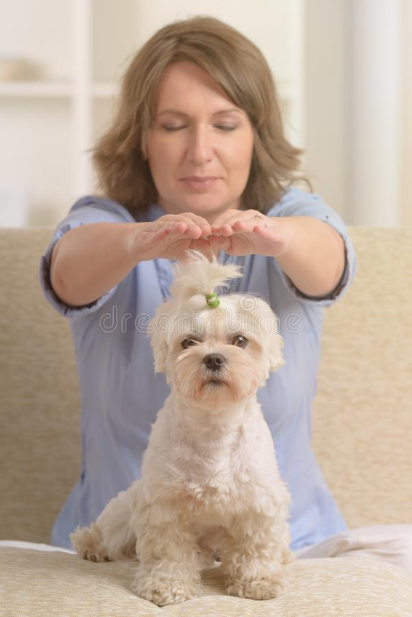 Woman practicing reiki therapy royalty free stock images