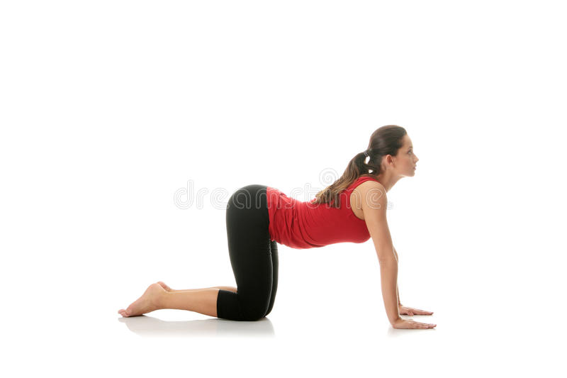 Download Woman Doing Stretching Exercise Stock Image - Image of person, adult: 16700991