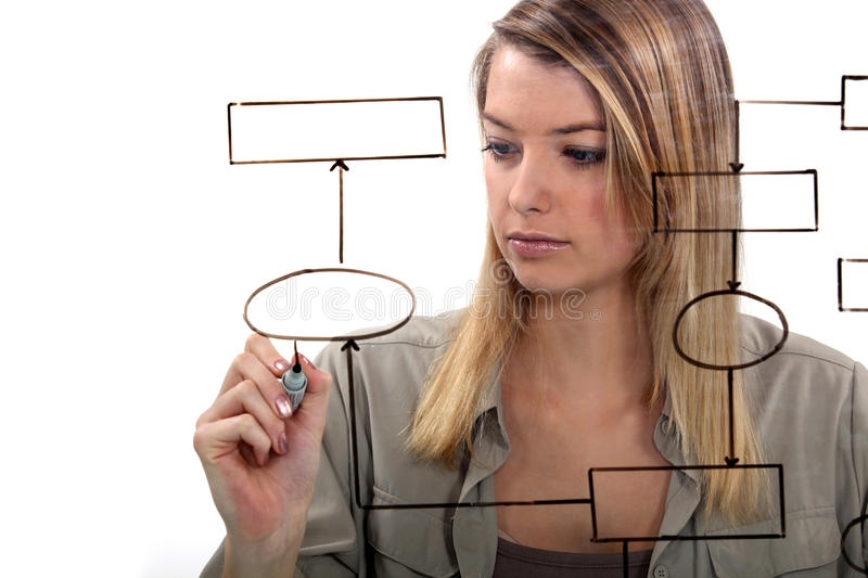Download Woman drawing flow-chart stock photo. Image of adult - 26498500