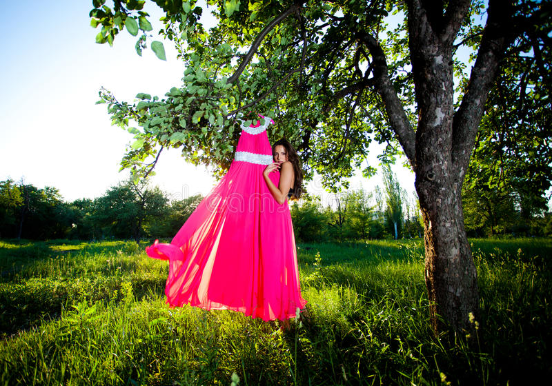 Woman And Dress Royalty Free Stock Image