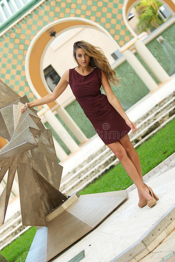 Download Woman In A Dress Royalty Free Stock Photography - Image: 26678787