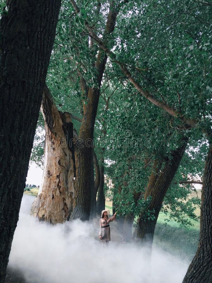 Woman In Dress Surrounded By White Smoke And Trees royalty free stock photos