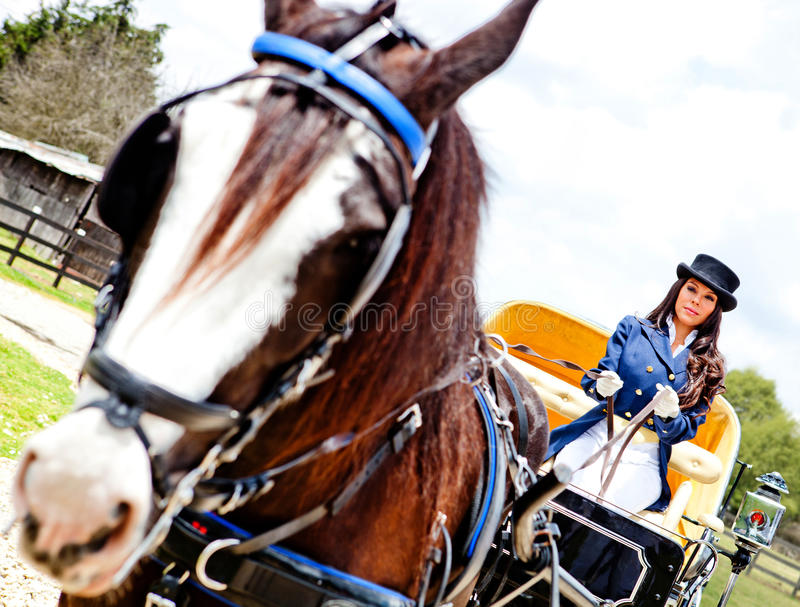 Download Woman Driving A Horse Carriage Stock Photo - Image: 23845928