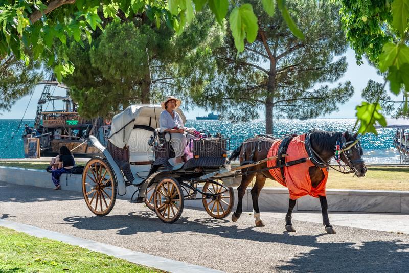 Woman driving touristic horse carriage in Thessaloniki royalty free stock photography