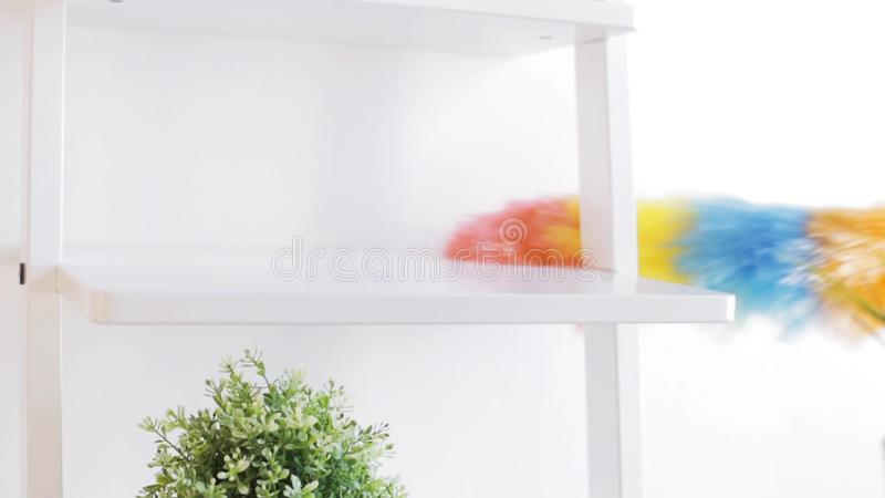 Best Way To Dust Furniture Concept woman with duster cleaning dust from shelf at home stock video