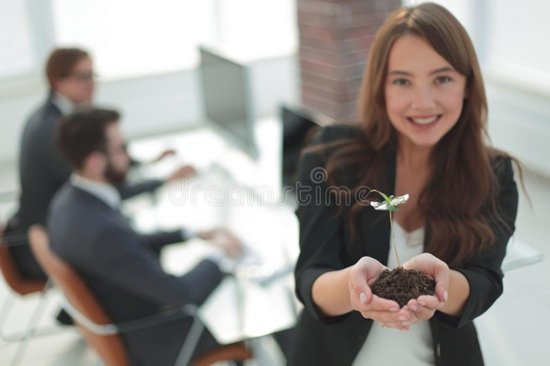 Woman ecologist with a fresh sprout in the office stock image