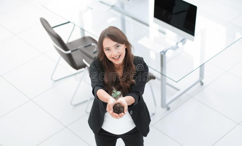 Woman ecologist shows you a fresh sprout royalty free stock image