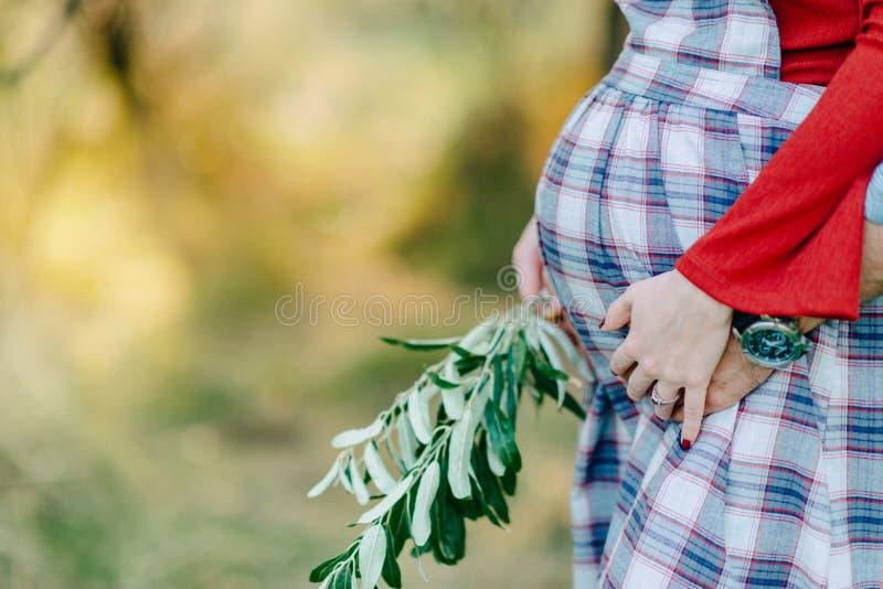 Woman& embarazada x27; vientre de s fotos de archivo libres de regalías