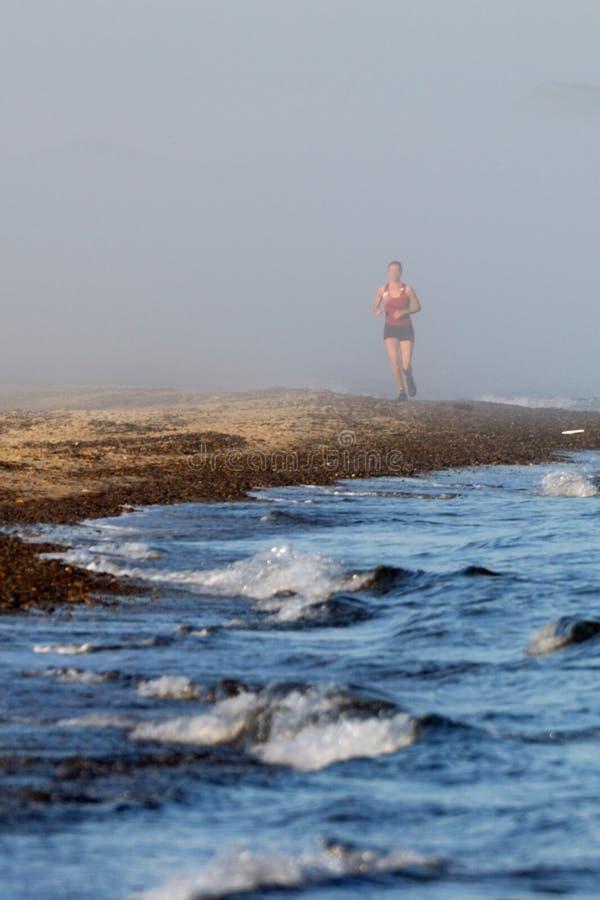 Download Woman Enjoying Early Morning Jog Stock Image - Image: 10577957