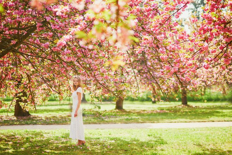 Woman enjoying her walk in park during cherry blossom season stock photo