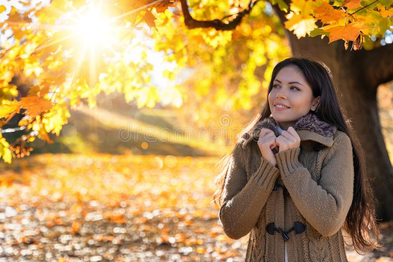 Woman enjoys the golden sunshine in a park. Attractive woman in warm knitwear enjoys the golden sunshine in a park with colorful leaves during autumn time stock images