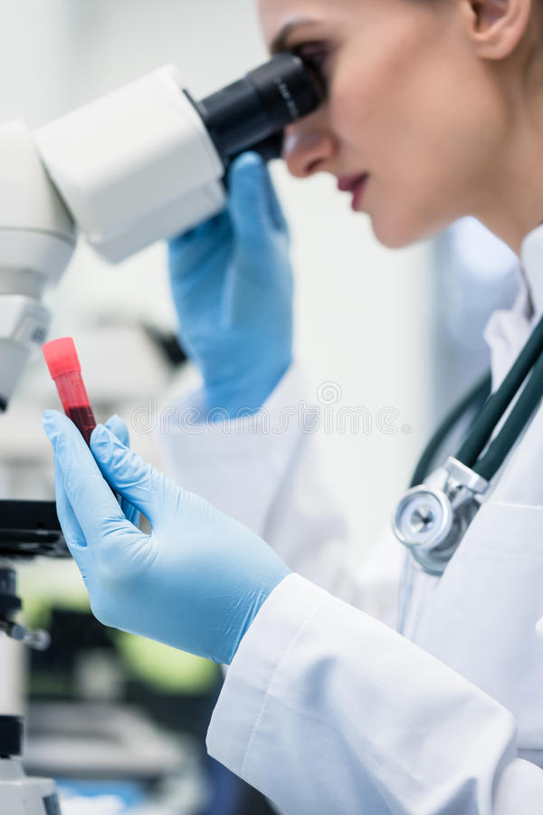 Woman examining blood sample under microscope in laboratory. Woman examining blood sample under microscope in medical or scientific laboratory stock image