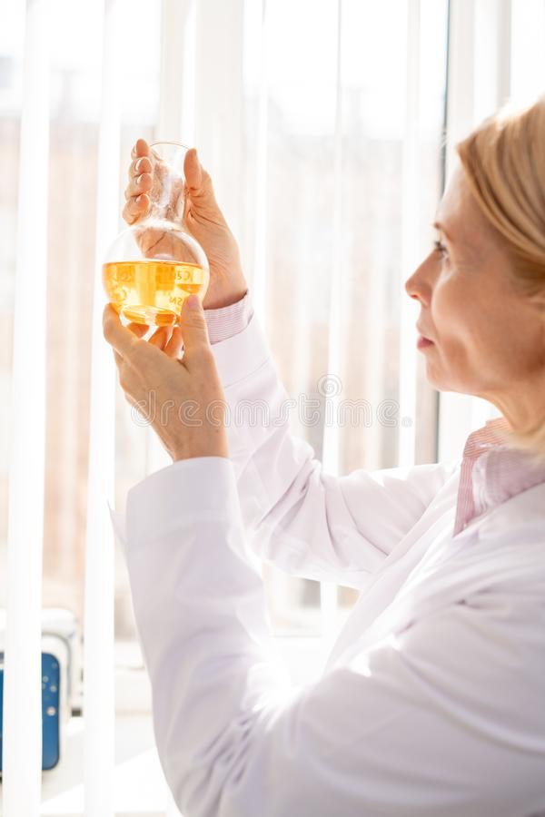 Woman examining chemical reaction. Serious thoughtful mature woman in lab coat standing in laboratory and holding flask while examining chemical reaction royalty free stock photography