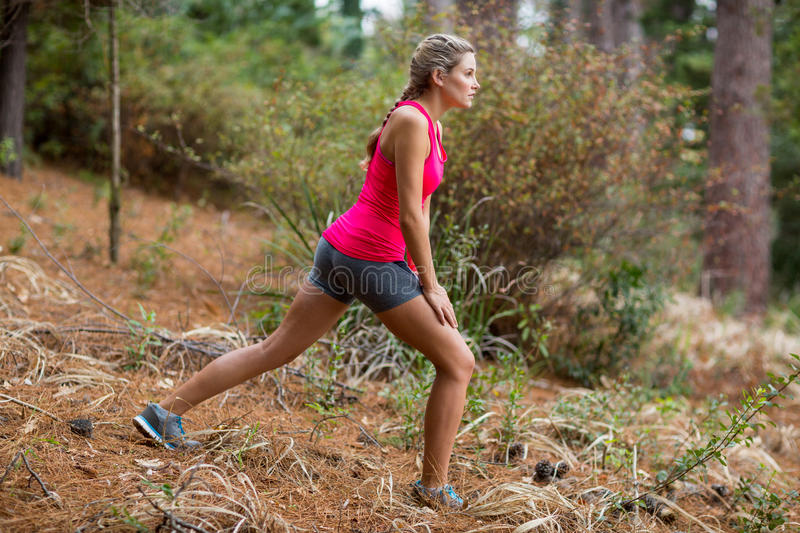 Woman exercising in forest royalty free stock images