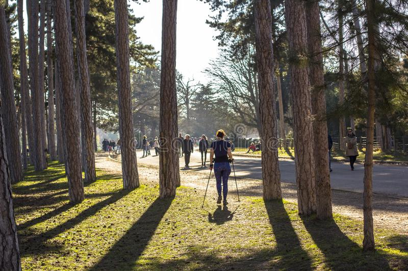Woman exercising in park in Paris. Nordic walking in spring nature royalty free stock images