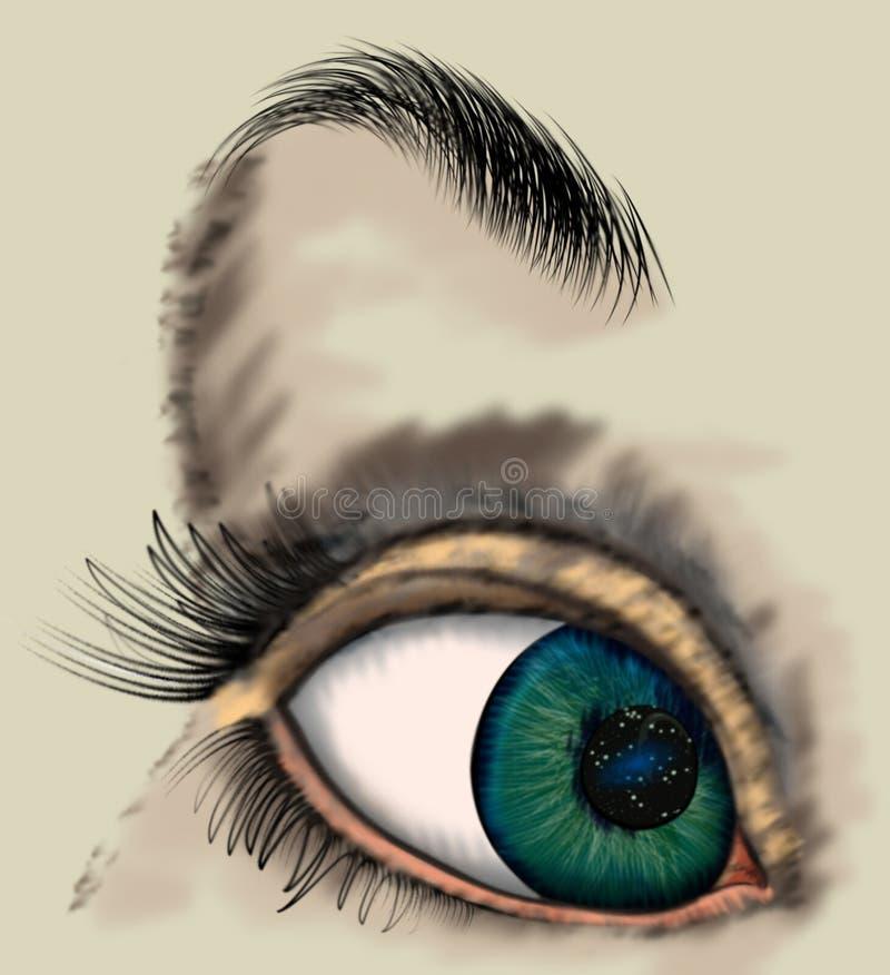 Woman eye. Close up illustration of a woman eye vector illustration
