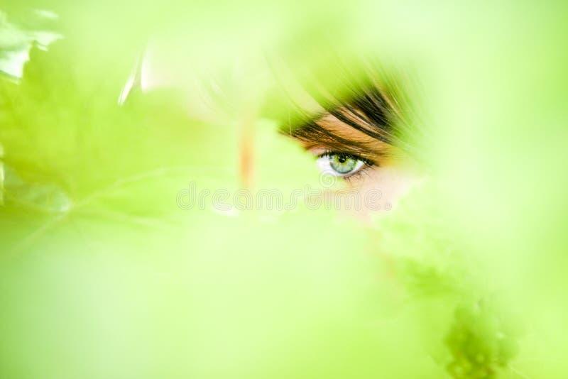 Download Woman Eye Royalty Free Stock Photos - Image: 2805798