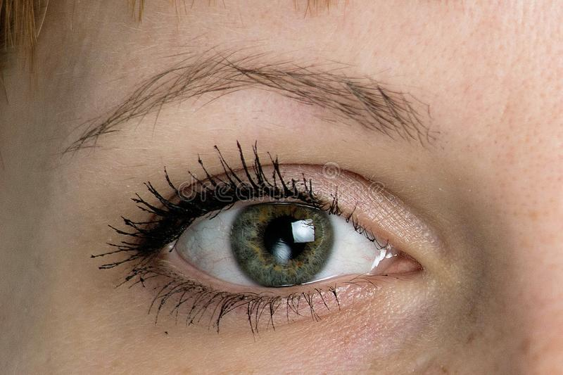 Woman eye close up royalty free stock image