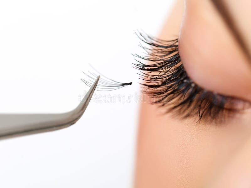 Woman eye with long eyelashes. Eyelash extension stock photo