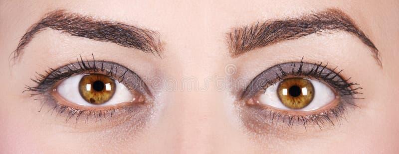 Download Woman eyes stock image. Image of adult, mascara, female - 10772875