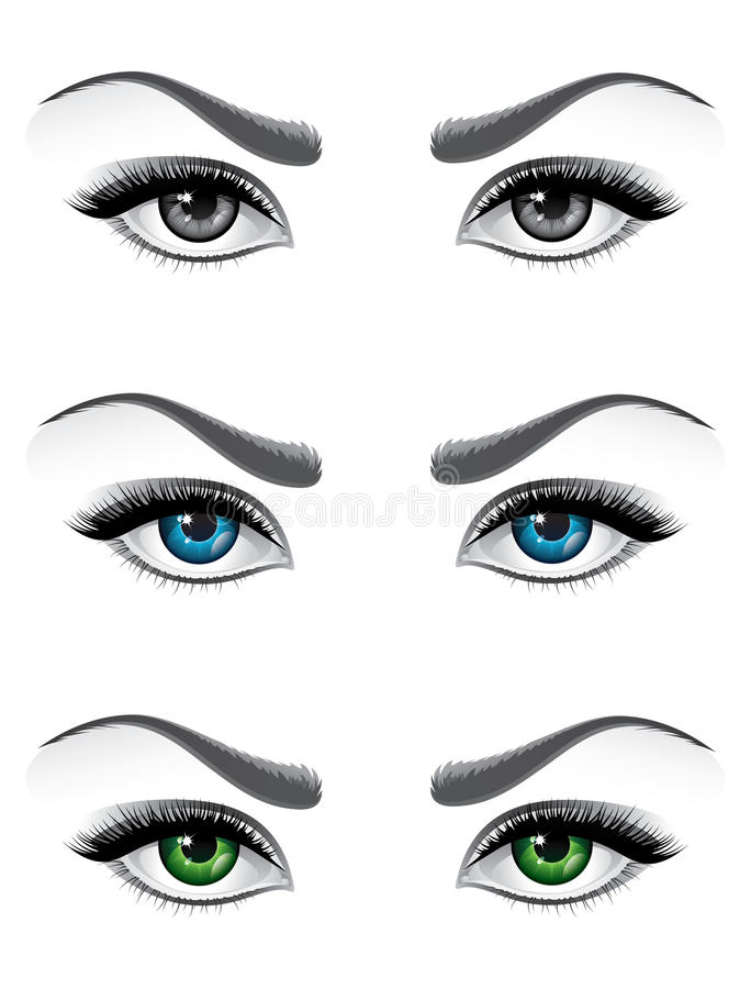 Download Woman eyes stock vector. Image of female, facial, little - 11246892