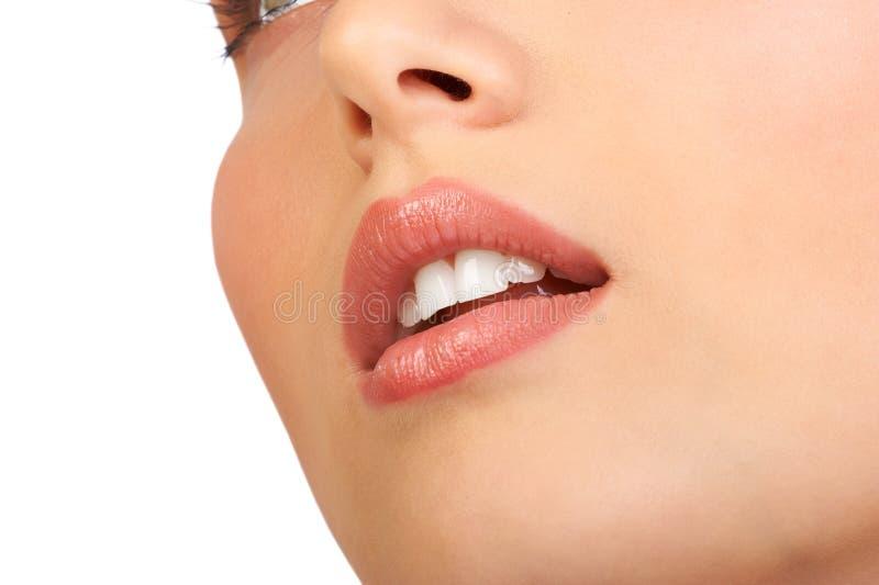 Download Woman face stock photo. Image of joyful, cosmetics, ivory - 2261070