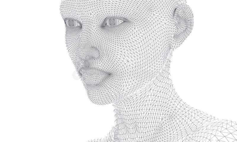 Woman Face In Wireframe Lines Isolated On White. Stock Illustration ...