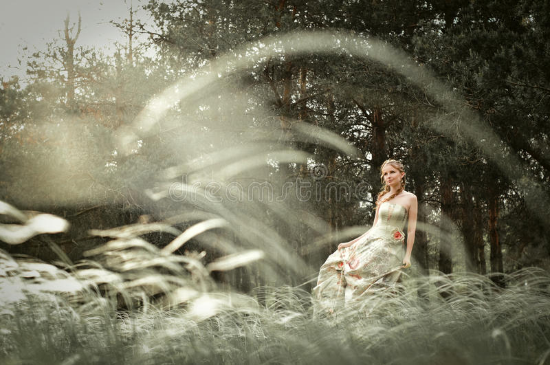 Woman in fairy forest royalty free stock photography
