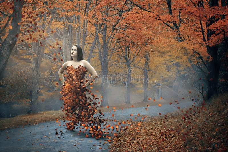 Woman and fall dress. A woman clothed with fall leaves royalty free stock photo
