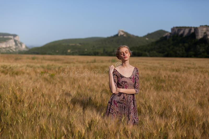 A woman farmer in field of wheat before the harvest stock photography